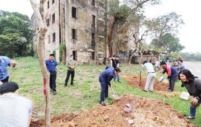 Phát động Tết trồng cây năm 2021